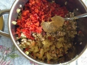 Retete365.RO   Salata tip boeuf cu carne de pui   Sa bucatarim cu Leta